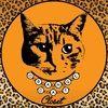 orangecatcloset